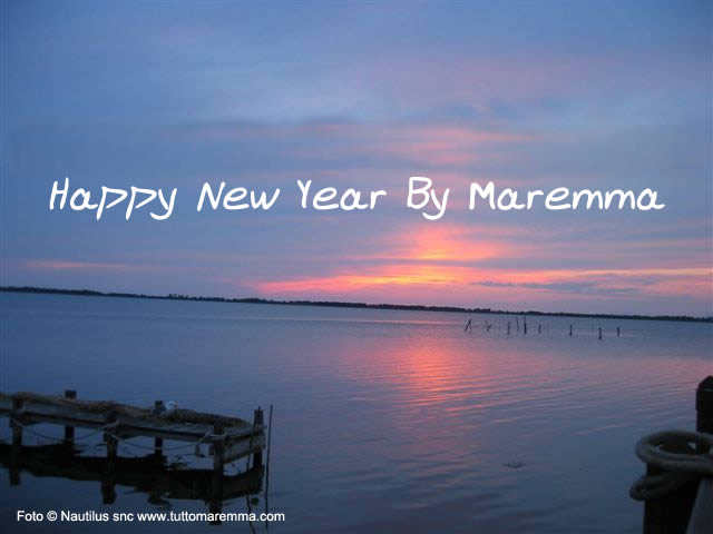Happy New Year by Maremma